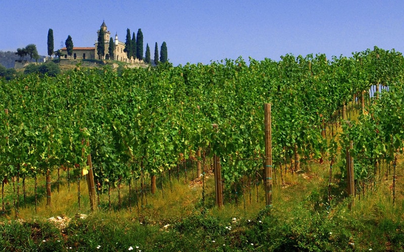 GUIDED TOURS TO FRANCIACORTA